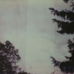 Polaroid_1_færdig-9302